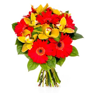 Red Gerberas and Orchids