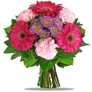 Gerberas and Carnations