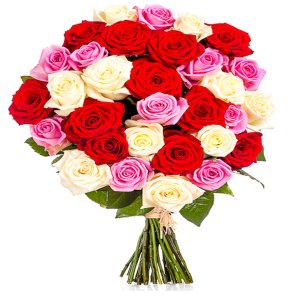 25 White, Red and Pink Roses