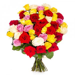 25 Mixed coloures roses