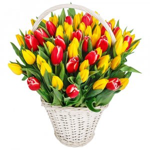 Basket full of Tulips