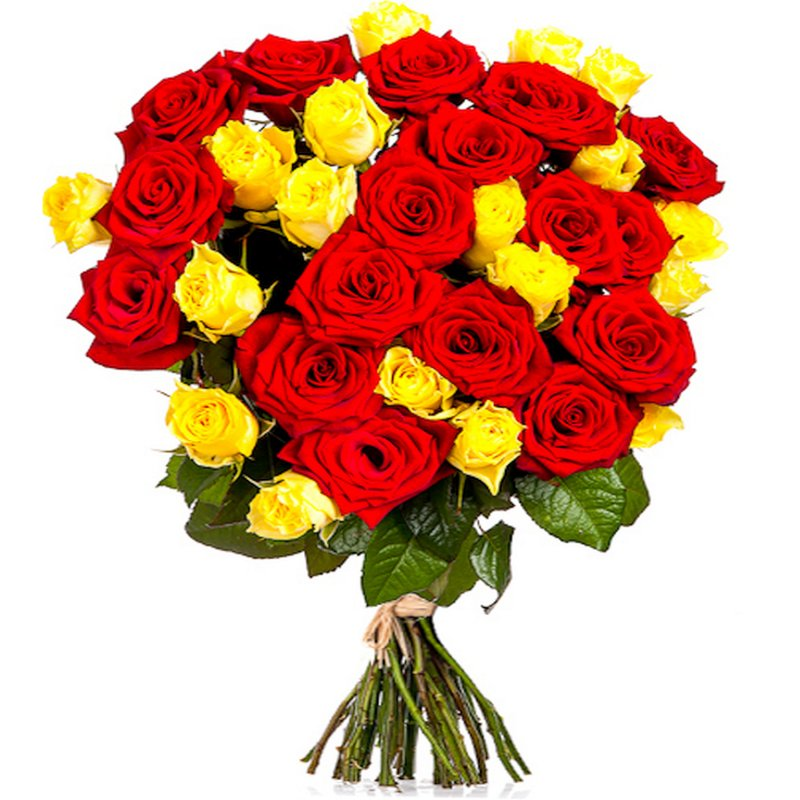 25 Yellow and Red Roses