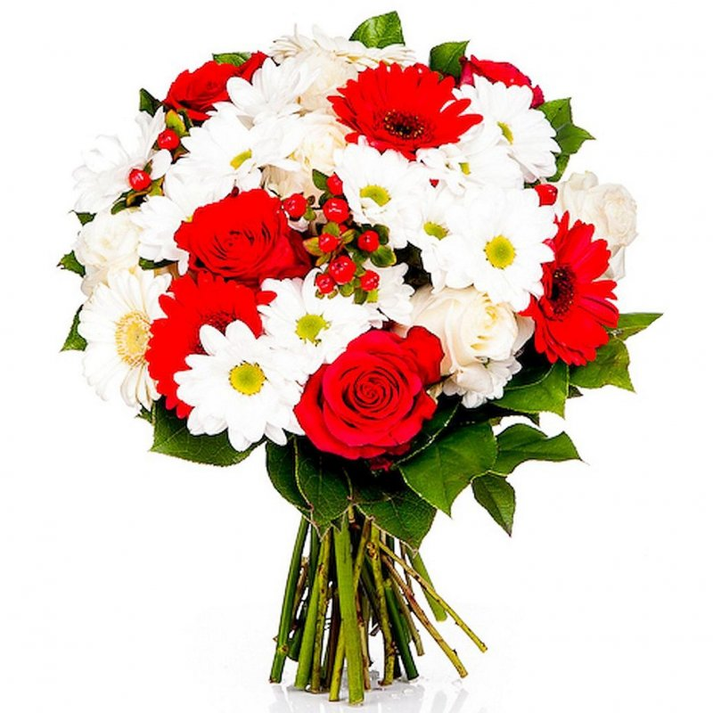 White Daisies & Red Roses